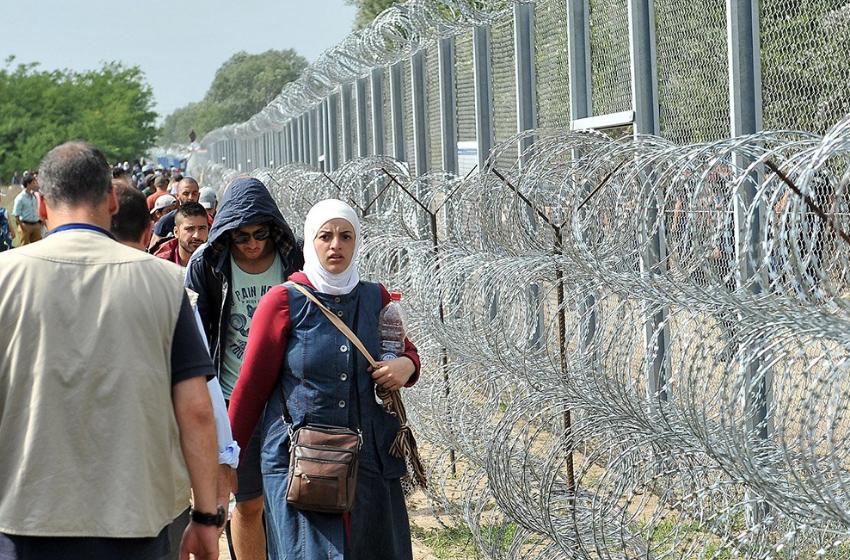 Стоп санкциям. Литва готова отказаться от прессинга, лишь бы Лукашенко помог с мигрантами