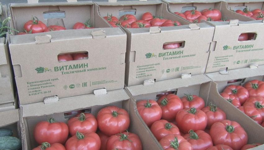 Блокирование ввоза томатов из Беларуси в РФ: причины, последствия